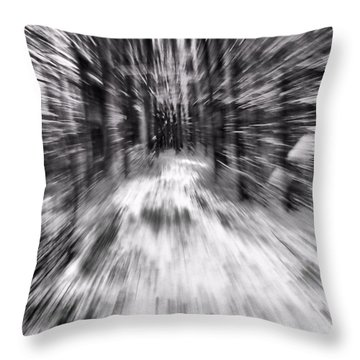 Blizzard In The Forest Throw Pillow by Dan Sproul