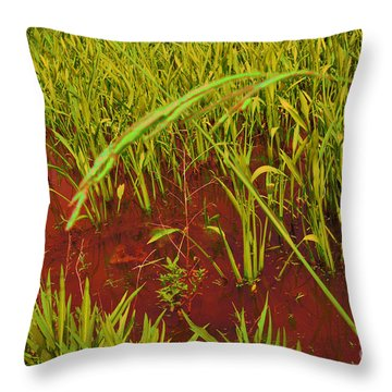 Bloody Battle Of New Orleans 3 Throw Pillow by Alys Caviness-Gober