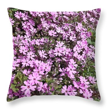 Bloomin Like Mad Throw Pillow by Sara  Raber