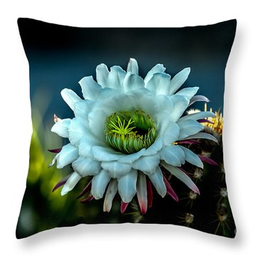 Blooming Argentine Giant Throw Pillow by Robert Bales