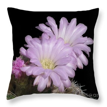 Throw Pillow featuring the photograph Blooming Arizona Cactus No. 1 by Merton Allen
