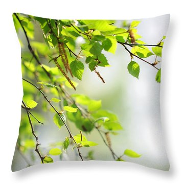 Blooming Birch Tree At Spring Throw Pillow by Jenny Rainbow