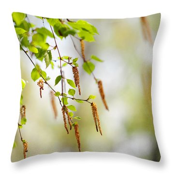 Blooming Birch Tree Throw Pillow by Jenny Rainbow