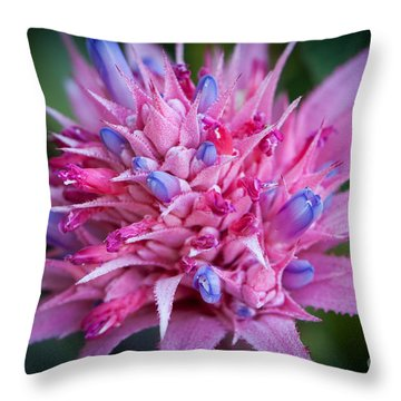 Blooming Bromeliad Throw Pillow