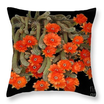 Throw Pillow featuring the photograph Blooming Cactus Masterpiece by Merton Allen