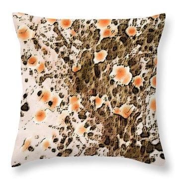 Blooming Desert No 1 Throw Pillow by Ben and Raisa Gertsberg