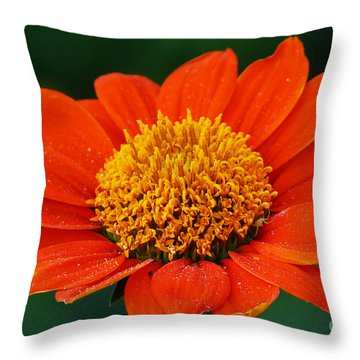 Blooming Flower Throw Pillow