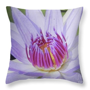 Blooming For You Throw Pillow by Chrisann Ellis