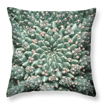 Blooming Geometry Throw Pillow