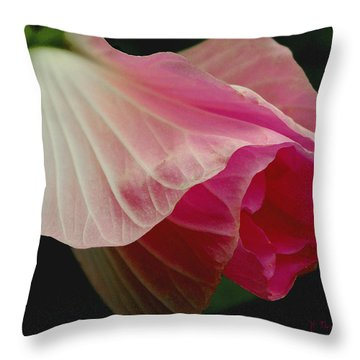 Blooming Hibiscus Throw Pillow by James C Thomas