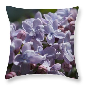 Blooming Lilacs Throw Pillow