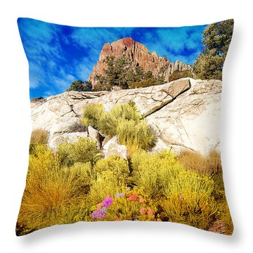 Throw Pillow featuring the photograph Blooming Nevada Desert Near Ely by Gunter Nezhoda