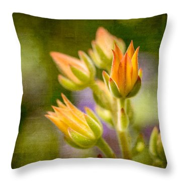 Blooming Succulents I Throw Pillow