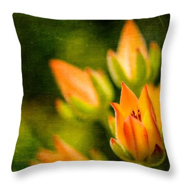 Blooming Succulents IIi Throw Pillow