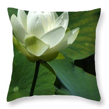 Blooming White Lotus Throw Pillow