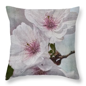 Blooms Of Cherry Throw Pillow
