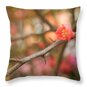 Throw Pillow featuring the photograph Blossom Amidst The Thorns by Lisa Knechtel