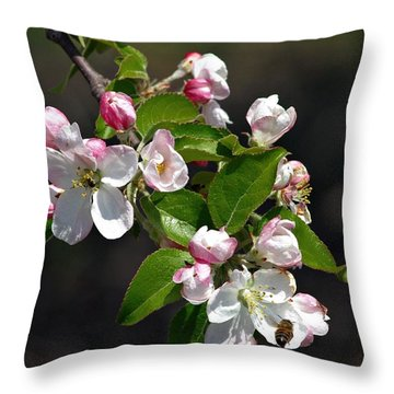 Throw Pillow featuring the photograph Blossom Bee by Henry Kowalski