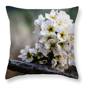 Blossom Gathering Throw Pillow by Terry Garvin