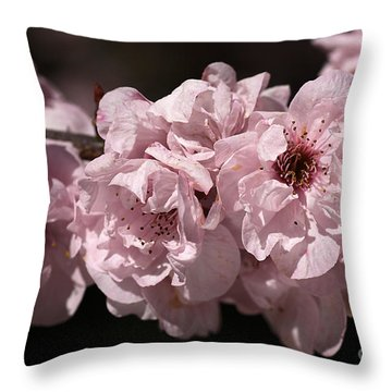 Blossom In Pink Throw Pillow by Joy Watson