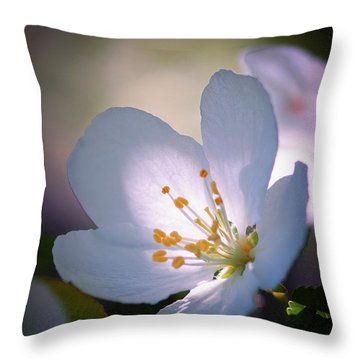 Blossom In The Sun Throw Pillow