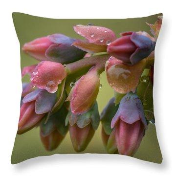 Blossom Rainbow Throw Pillow