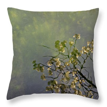 Throw Pillow featuring the photograph Blossom Reflection by Marilyn Wilson