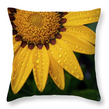 Blossom Throw Pillow by Ron White