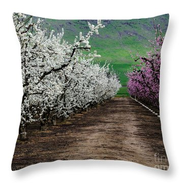 Blossom Standoff Throw Pillow by Terry Garvin