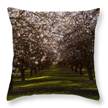 Blossom Tunnel  Throw Pillow