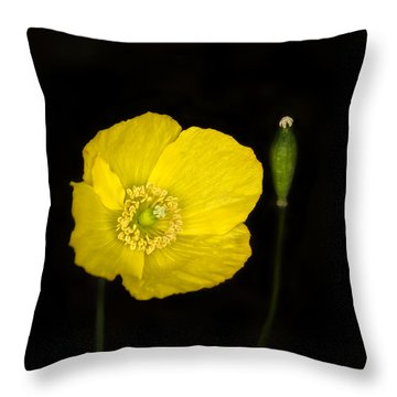 Blossoming Kiss Throw Pillow
