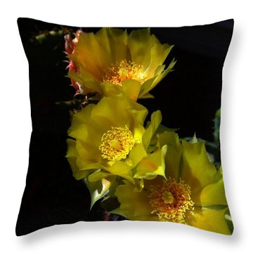 Blossoms At Dusk Throw Pillow by Nick Kloepping