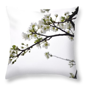 Throw Pillow featuring the photograph Blossoms by Kristen R Kennedy