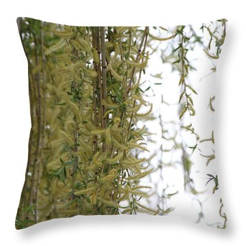 Blossoms Of The Willow 1 Throw Pillow by Jennifer E Doll
