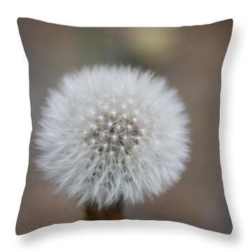 Blow Ball  Throw Pillow by Daniel Precht