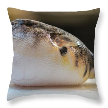 Blowfish 2 Throw Pillow