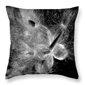 Throw Pillow featuring the photograph Blowing In The Wind by Lucinda Walter