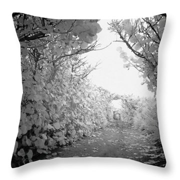 Throw Pillow featuring the photograph Blowing Rocks Jupiter Florida by Bradley R Youngberg