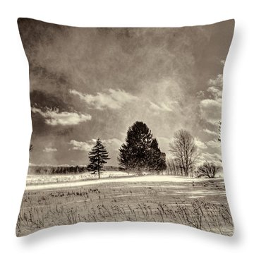 Blowing Snow Canaan Valley Throw Pillow by Dan Friend