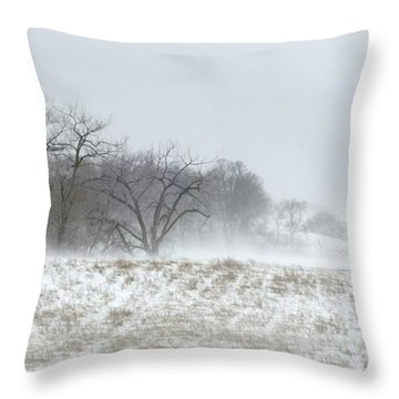 Blowing Snow Over Fields And Forest Throw Pillow