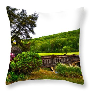 Blowing Spring Park Throw Pillow by David Patterson