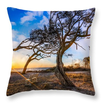 Blowing With The Wind Throw Pillow by Debra and Dave Vanderlaan