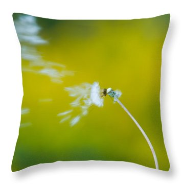 Throw Pillow featuring the photograph Blown Away by Sebastian Musial