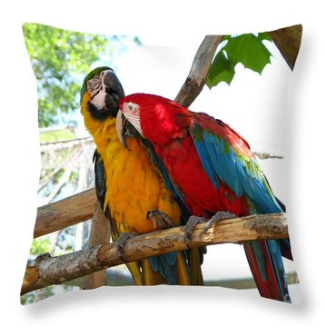 Throw Pillow featuring the photograph Blue And Gold by Greg Patzer