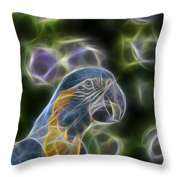 Blue And Gold Macaw  Throw Pillow by Douglas Barnard