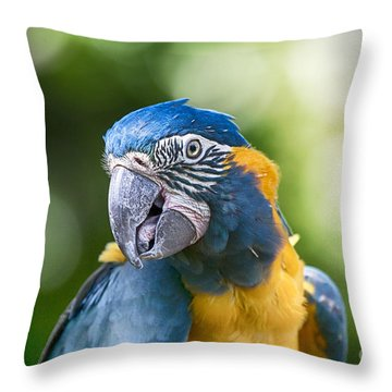 Blue And Gold Macaw V3 Throw Pillow