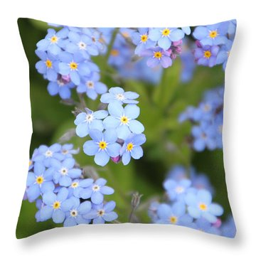 Throw Pillow featuring the photograph Blue And Green by Elizabeth Lock