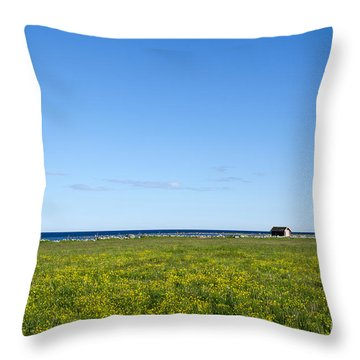Throw Pillow featuring the photograph Blue And Yellow Landscape by Kennerth and Birgitta Kullman