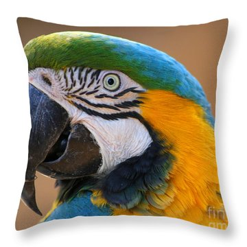 Throw Pillow featuring the photograph Blue And Yellow Macaw by Bob and Jan Shriner