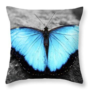 Blue Angel Butterfly 2 Throw Pillow